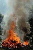 Dei rifiuti vengono bruciati in campagna e, a volte, possono provocare incendi e produrre diossina. Waste is burned in the countryside and, at times, can cause fires and produce dioxin....
