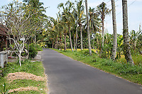 Bali, Indonesia.  Country Road, north of Ubud.