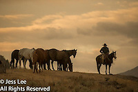 Early morning Cowboys working and playing. Cowboy Cowboy Photo Cowboy, Cowboy and Cowgirl photographs of western ranches working with horses and cattle by western cowboy photographer Jess Lee. Photographing ranches big and small in Wyoming,Montana,Idaho,Oregon,Colorado,Nevada,Arizona,Utah,New Mexico. Fine Art Limited Edition Photography Of American Cowboys and Cowgirls by Jess Lee