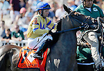 ARLINGTON HEIGHTS, IL - AUGUST 13: Lots o' Lex #7, ridden by Edgar Perez, during the post parade before the Beverly D. Stakes at Arlington International Racecourse on August 13, 2016 in Arlington Heights, Illinois. (Photo by Jon Durr/Eclipse Sportswire/Getty Images)