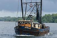 - fishing boat in navigation at mouth of Rio Escondido river, near the city of Bluefields on the Atlantic coast....- peschereccio in navigazione alla foce del fiume Rio Escondido, presso la città di Bluefields sulla costa atlantica