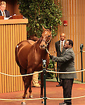 Hip 112 Shotgun Gulch, consigned by Taylor Made Sales sold for $1,600,000 to Mandore Int. Agency..November 06, 2012.