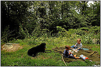 Two young boys share a picnic in the woods with their black lab. Model released photo.
