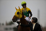 TOYOAKE,JAPAN-DECEMBER 04: Sound True,ridden by Takuya Ono,after winning the Champions Cup at Chukyo Racecourse on December 04,2016 in Toyoake,Aichi,Japan (Photo by Kaz Ishida/Eclipse Sportswire/Getty Images)