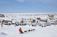 Musher Lance Mackey arrives in Candle in second place, the half way point of the 2008 All Alaska Sweepstakes sled dog race on the Seward Peninsula, Alaska.