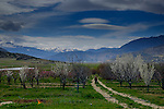 Spring blossom and snow capped Taurus Mountains during Stage 3 of the 2015 Presidential Tour of Turkey running 165.3km from Kemer to Elmali. 27th April 2015.<br /> Photo: Tour of Turkey/Steve Thomas/www.newsfile.ie