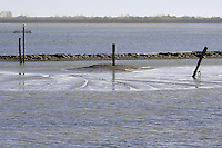 - il delta del fiume Po a  Pila, comune di Porto Tolle, in provincia di Rovigo....- the delta of river Po at Pila, Porto Tolle  municipality, in the province of Rovigo