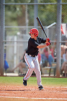 Ball State Cardinals left fielder Mack Murphy (12) bats during a game against the Saint Joseph's Hawks on March 9, 2019 at North Charlotte Regional Park in Port Charlotte, Florida.  Ball State defeated Saint Joseph's 7-5.  (Mike Janes/Four Seam Images)