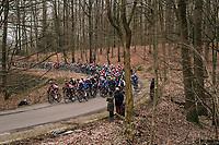 peloton in the forest up La Houpe<br /> <br /> 61th E3 Harelbeke (1.UWT)<br /> Harelbeke - Harelbeke (206km)