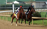 April 18, 2015 Kentucky Derby and Oaks contenders at Churchill Downs.  Keen Ice (ridden by Tammy Fox) works in company 5F in :59.80. Owner Donegal Racing, trainer Dale Romans. By Curlin x Medomak (Awesome Again) ©Mary M. Meek/ESW/CSM