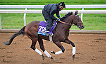 October 26, 2015 :  Ralis, trained by Doug F. O'Neill and owned by Reddam Racing, LLC, exercises in preparation for the Sentient Jet Breeders' Cup Juvenile at Keeneland Race Track in Lexington, Kentucky on October 26, 2015. Scott Serio/ESW/CSM