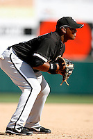 Dayan Viciedo  -  Chicago White Sox - 2009 spring training.Photo by:  Bill Mitchell/Four Seam Images