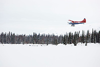 Two Iditarod dog teams run on Finger Lake as a turbine Otter airplane begins a landing approach to the airstrip at the Finger Lake checkpoint