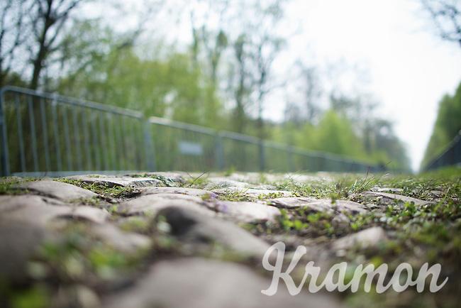 the cobbles of sector 18: Pavé de la Trouée d'Arenberg are ready<br /> <br /> 2014 Paris-Roubaix reconnaissance