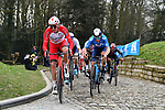 The peloton led by Christophe Laporte (FRA) Cofidis and Ivan Garcia Cortina (ESP) Movistar Team summit the Muur van Geraardsbergen during the 76th edition of Omloop Het Nieuwsblad 2021 running 200km from Gent to Ninove, Belgium. 27th February 2021  <br /> Picture: Serge Waldbillig | Cyclefile<br /> <br /> All photos usage must carry mandatory copyright credit (© Cyclefile | Serge Waldbillig)