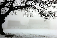 Fog settles across farm country in Ohio on a warm day in the middle of winter