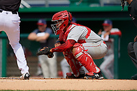 Auburn Doubledays catcher Wilmer Perez (20) during a NY-Penn League game against the Batavia Muckdogs on June 19, 2019 at Dwyer Stadium in Batavia, New York.  Batavia defeated Auburn 5-4 in eleven innings in the completion of a game originally started on June 15th that was postponed due to inclement weather.  (Mike Janes/Four Seam Images)