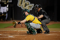 Siena Saints catcher Bryce Mordecki (31) and home plate umpire Rob Healey during a game against the UCF Knights on February 14, 2020 at John Euliano Park in Orlando, Florida.  UCF defeated Siena 2-1.  (Mike Janes/Four Seam Images)