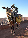 A local man on a donkey on his way from Quarzazate across the stoney flatland and semi desert towards the oasis at Fint in Morocco.