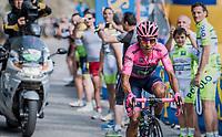 Nairo Quintana (COL/Movistar) up the Foza climb (1086m)<br /> <br /> Stage 20: Pordenone › Asiago (190km)<br /> 100th Giro d'Italia 2017