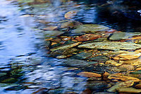 """FIFTY FIFTY""<br />