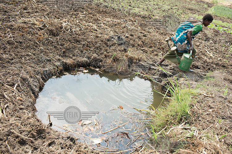 Gatay Mc. Noer Banda (38) collecting water for her crops from a small pond.