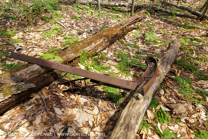 Artifact (sled runner) at an abandoned logging camp along a tributary of the Wild Ammonoosuc River, on the side of Mt. Blue, in Benton, New Hampshire. This is probably a 1900s logging camp of the Fall Mountain Paper Company, which later became the International Paper Company. The removal of historical artifacts from federal lands without a permit is a violation of federal law.
