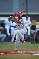 Jhon Torres (22) of the Johnson City Cardinals at bat against the Burlington Royals at Burlington Athletic Stadium on September 4, 2019 in Burlington, North Carolina. The Cardinals defeated the Royals 8-6 to win the 2019 Appalachian League Championship. (Brian Westerholt/Four Seam Images)