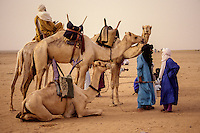 Desert Conversation.  Tuaregs in Conversation near In-Gall, Niger, Sahara Desert.