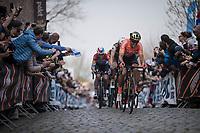 Greg Van Avermaet (BEL/CCC)`up the Oude Kwaremont<br /> <br /> 103rd Ronde van Vlaanderen 2019<br /> One day race from Antwerp to Oudenaarde (BEL/270km)<br /> <br /> ©kramon