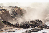 Kenya - The Great Migration