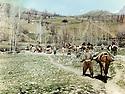 Iraq 1988.People on their way to exile in the valley of Jaf Ayati.Irak 1988.Dans la vallee de Jaf Ayati, un groupe de villageois sur le chemin de l'exil vers l'Iran