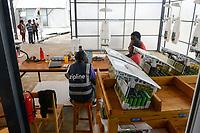 RWANDA, Gitarama, Muhanga, zipline drone airport , zipline is a american start-up and delivers Blood preserve and medical drugs by drone to rural health centers, the battery driven Zip 2 can travel at a top speed around 79 miles per hour, carrying 3.85 pounds of cargo and has a range of 160 km round trip, the delivery box is dropped by a small parachute, technicians at work / RUANDA, Gitarama, Muhanga, zipline Drohnen Flugstation, zipline ist ein amerikanisches start-up und transportiert Blutkonserven und Medikamente mit Drohnen wie der Zip 2 zu ländlichen Krankenstationen, die Zip 2 hat fuer einen Rundflug eine Reichweite von 130 km, die Batterie betriebene und ferngesteuerte Drohne wirft die Sendung per Fallschirm ab, Techniker bei der Arbeit