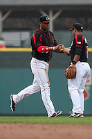 Left fielder Adam Walker (30) and Heiker Meneses (9) of the Rochester Red Wings celebrate their win against the Scranton Wilkes-Barre Railriders on May 1, 2016 at Frontier Field in Rochester, New York. Red Wings won 1-0.  (Christopher Cecere/Four Seam Images)