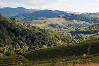 Paesaggio presso Montalto Pavese (Pavia) --- Landscape near Montalto Pavese (Pavia)