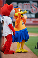 Akron RubberDucks mascots Orbit and Rubberta the Duck before an Eastern League game against the Reading Fightin Phils on June 4, 2019 at Canal Park in Akron, Ohio.  Akron defeated Reading 8-5.  (Mike Janes/Four Seam Images)