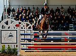 October 17, 2021: Bruce O. Davidson Jr. (USA), aboard Jak My Style, competes during the Stadium Jumping Final at the 5* level during the Maryland Five-Star at the Fair Hill Special Event Zone in Fair Hill, Maryland on October 17, 2021. Jon Durr/Eclipse Sportswire/CSM