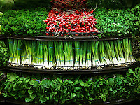 Vegetables, onions, lettuce, parsley, herbs on display in produce section of grocery store. On an iPhone.