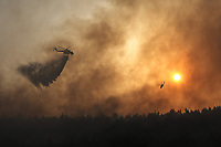 Pictured: A helicopter douses the flames in Varibobi, Athens, Greece. Wednesday 04 August 2021<br /> Re: Forest fire in Varibobi, on the outskirts of Athens, Greece.