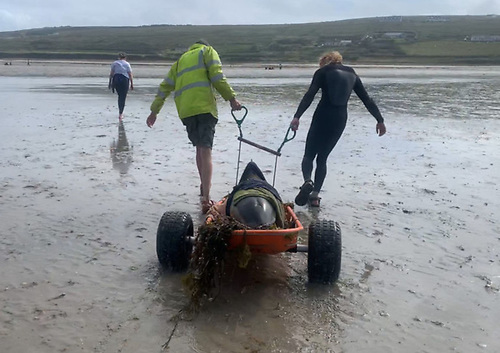 Mayo IWDG members used their new wheeled dolphin stretcher to move the larger cetaceans from the beach