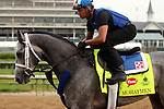 LOUISVILLE, KY - APRIL 19: Mohaymen (Tapit x Justwhistledixie, by Dixie Union) jogs back to the barn after galloping with exercise rider Miguel Jaime, Churchill Downs, Louisville KY. Owner Shadwell Stable, trainer Kieran McLaughlin. (Photo by Mary M. Meek/Eclipse Sportswire/Getty Images)