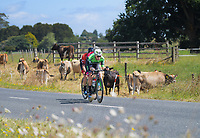 Aaron Gate leads during Stage One - Lost Lake Loop (Cambridge - Kaipaki - Roto O Rangi - Leamington). 2019 Grassroots Trust NZ Cycle Classic UCI 2.2 Tour from St Peter's School in Cambridge, New Zealand on Wednesday, 23 January 2019. Photo: Dave Lintott / lintottphoto.co.nz