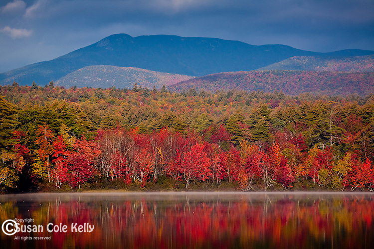 Fall foliage on the Sandwich Range in the White Mountain National Forest, NH, USA