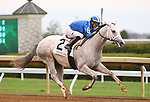 LEXINGTON, KY - April 06, 2018. #2 Almithmaar and jockey Jose Ortiz win the 7th race, Maiden $74,000 for 3 year olds at Keeneland Race Course.  Lexington, Kentucky. (Photo by Candice Chavez/Eclipse Sportswire/Getty Images)