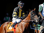 ARLINGTON HEIGHTS, IL - AUGUST 13: Take the Stand #7, ridden by Edgar S. Prado, during the post parade before Arlington Million at Arlington International Racecourse on August 13, 2016 in Arlington Heights, Illinois. (Photo by Jon Durr/Eclipse Sportswire/Getty Images)