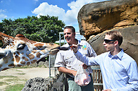 MIAMI BEACH, FL - OCTOBER 15:   2012 NASCAR Sprint Cup Series Champion Brad Keselowski during his visit to Zoo Miami on October 15, 2013 in Miami Beach, Florida. <br /> <br /> People:  Brad Keselowski