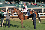 LEXINGTON, KY - OCTOBER 22: #12 Lightstream and jockey Julien Leparoux in the winners circle after winning the 18th running of The Lexus Raven Run Grade 2 $250,000  at Keeneland Race Course for owner Up Hill Stable and Head of Plains Partners and trainer Brian Lynch.  October 22, 2016, Lexington, Kentucky. (Photo by Candice Chavez/Eclipse Sportswire/Getty Images)