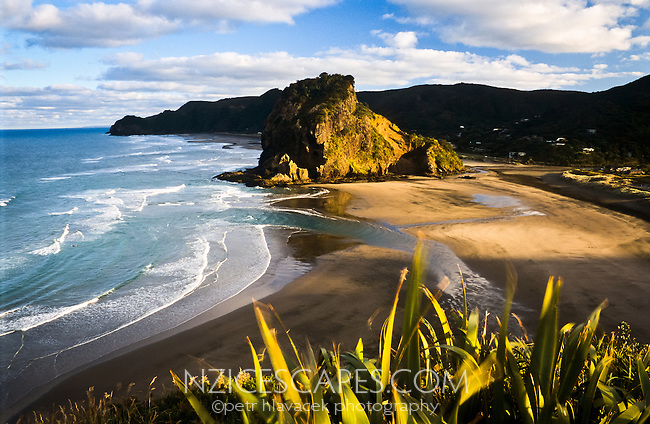 Piha Beach with its small township west of Auckland - West Auckland, New Zealand