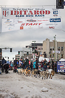 Cindy Gallea and team leave the ceremonial start line with an Iditarider at 4th Avenue and D street in downtown Anchorage, Alaska during the 2015 Iditarod race. Photo by Jim Kohl/IditarodPhotos.com