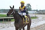 HOT SPRINGS, AR - MARCH 12: Nickname (4) with jockey Corey Nakatani after coming in second in the Honeybee Stakes at Oaklawn Park on March 12, 2016 in Hot Springs, Arkansas. (Photo by Justin Manning)